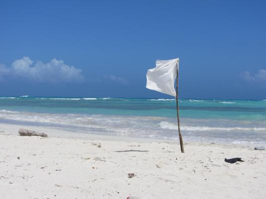 beach and flag